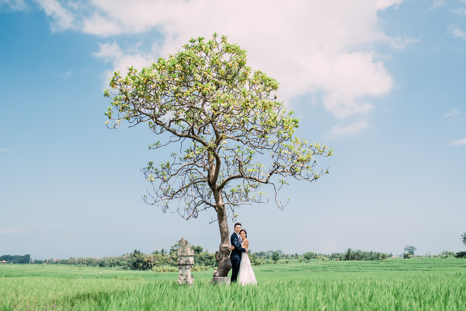 Bali pre wedding location in Seseh Rice Field